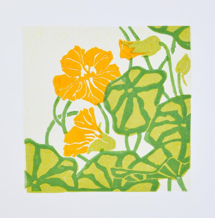 Tropaeolum - Original artwork by Pat Rhead-Phillips