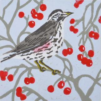 Redwing (Rich Pickings - Original artwork by Pat Rhead= Phillips