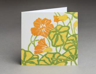 Nasturtium - an original fine art greetings card by Pat Rhead-Phillips