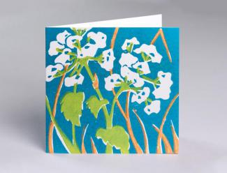 Cow parsley - an original fine art greetings cards by Pat Rhead-Phillips